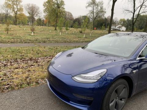 Blue Tesla parked in front of Wes Montgomery Park and a field of newly planted trees.