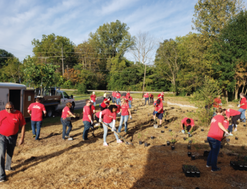 Lilly Volunteers planting GreenSpace