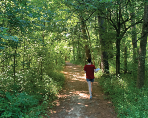 Woman walks down a forest path